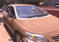 She Used Cow-dung To Keep Her Car Cool!